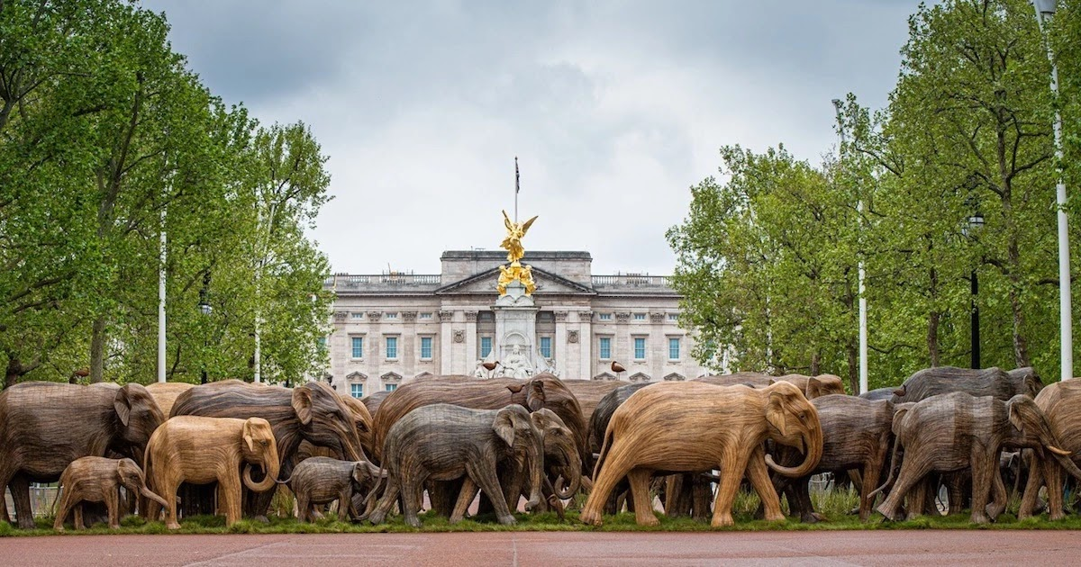 100 Life-Sized Elephant Sculptures In London Aim To Bring Attention To The Plight Of Elephants In The Wild
