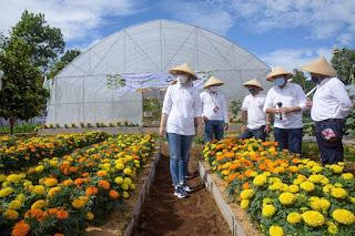 festival-hortikultura-purwakarta-2020