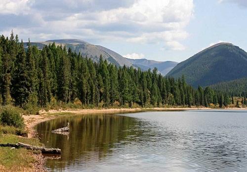 Người ta gọi vùng rừng vành đai Siberi là gì?