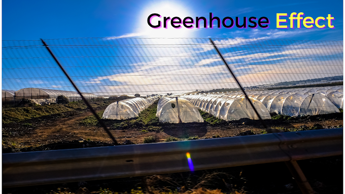 Greenhouse Effect Paragraph | Paragraph on Greenhouse Effect