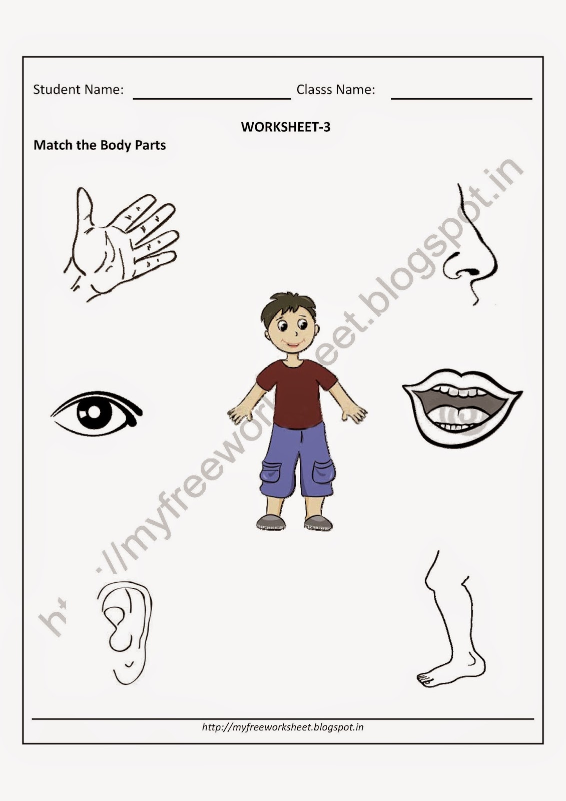 free printable parts of a body worksheets pdf # 3