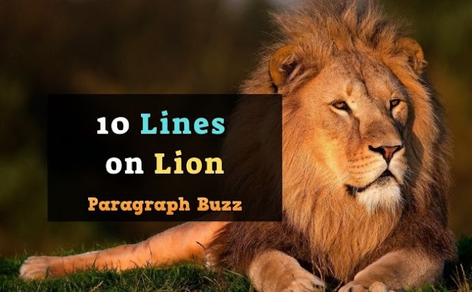 10 Lines on Lion in English