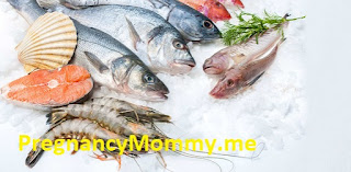 Pregnant Seafood Is Bound To Make An Impact In Your Enterprise