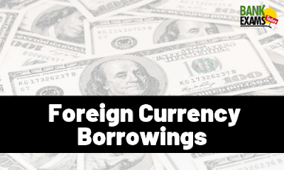 Foreign Currency Borrowings
