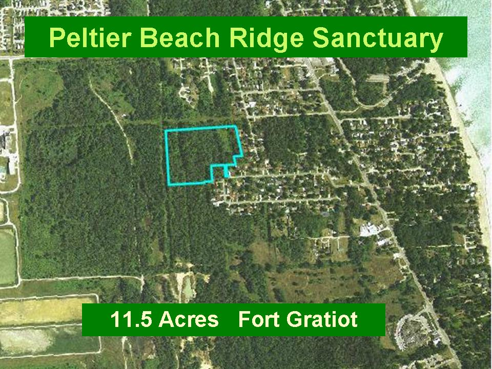 Peltier Beach Ridge Sanctuary