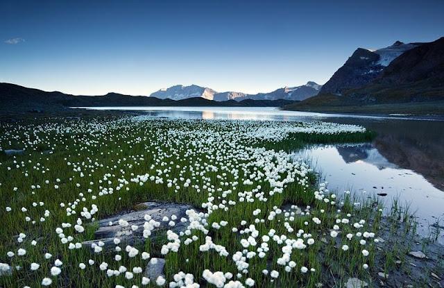 Ngắm vẻ đẹp dãy núi Alps dài nhất Châu Âu 18