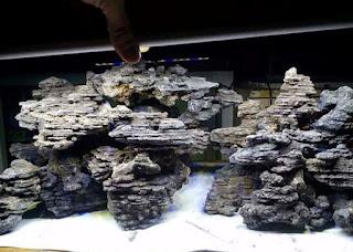 Batu Besi Jenis Batu untuk Aquascape