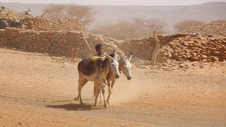 Used to get water in Sudan