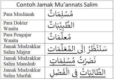 Contoh Jamak Mu'annats Salim