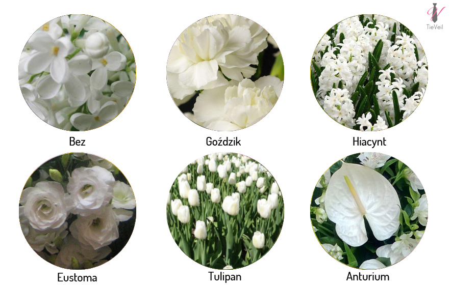 Kwiaty Sezonowe Na Wesele Tieveil Kompleksowa Organizacja ślubów