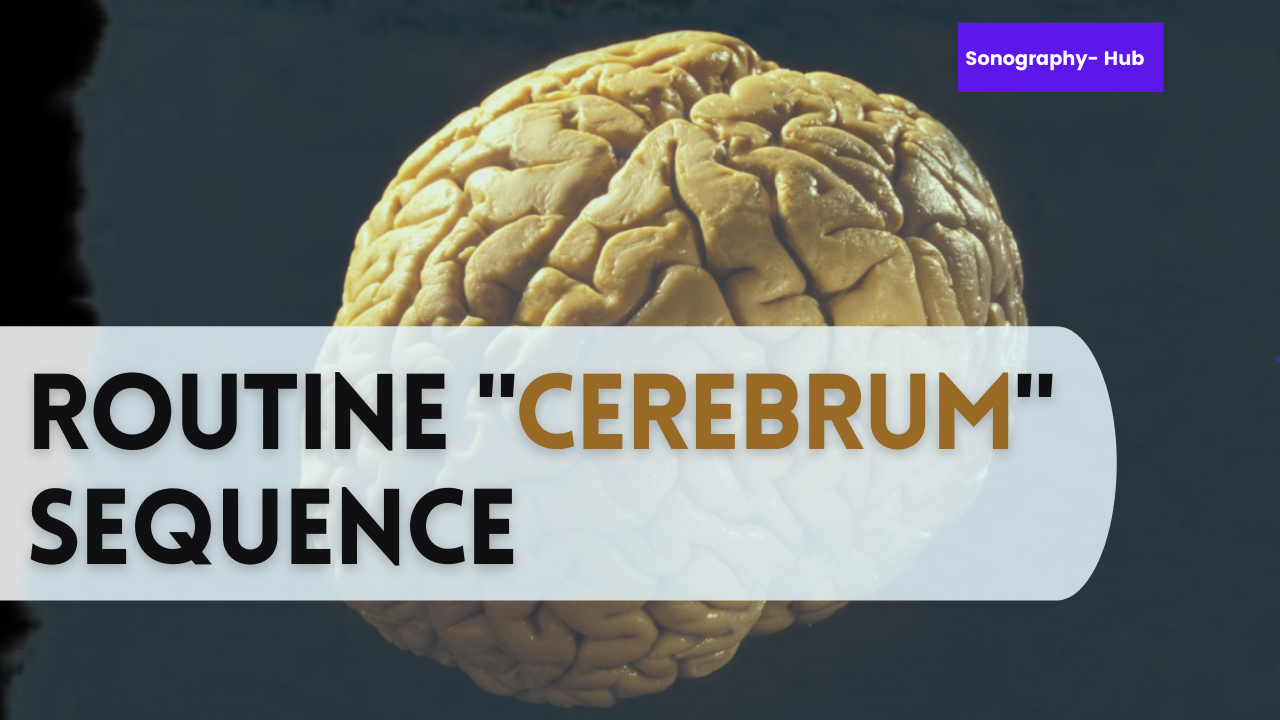 Routine Cerebrum Sequence | CT Beginners Tips
