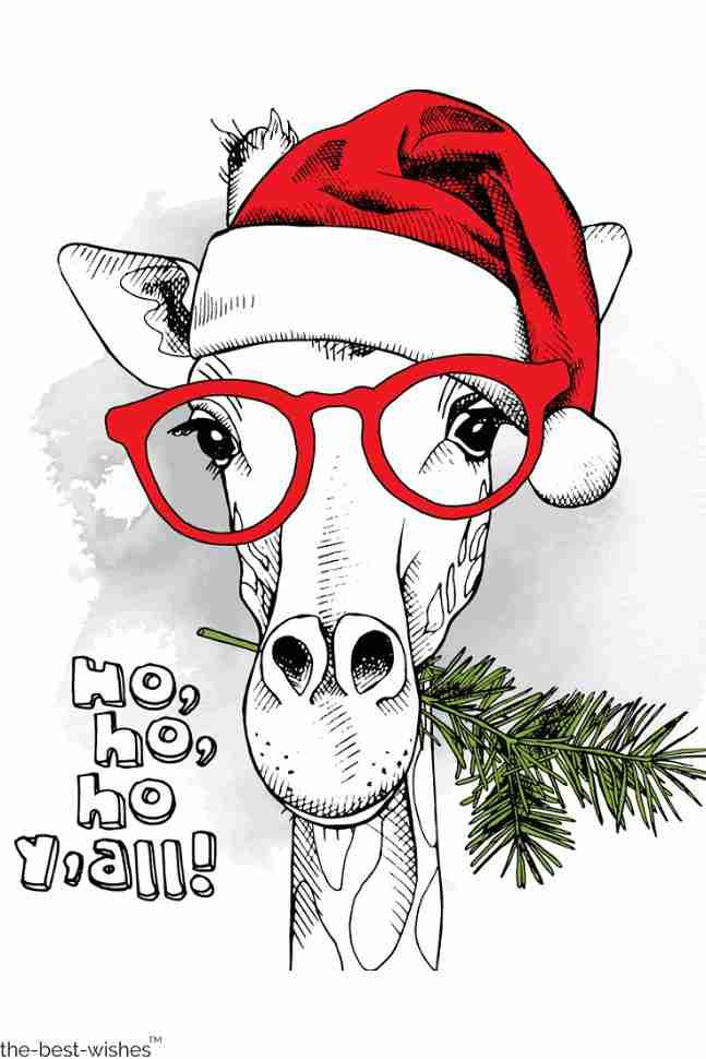 funny christmas picture hohoho