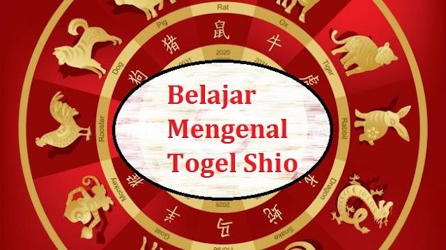 Panduan Togel SHio dan Homo