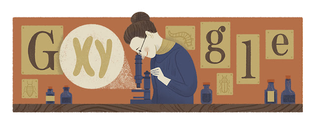 Nettie Stevens' 155th birthday - Google Doodle