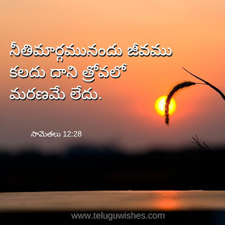 bible quotes in telugu with images