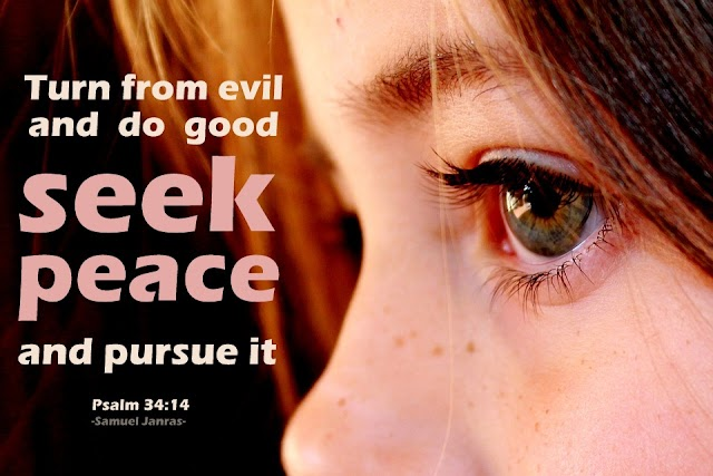 Seek Peace Bible Verse Quotes