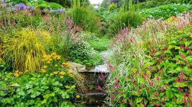 Trebah Garden: brillando con luz propia