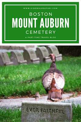 Mount Auburn Cemetery in Boston
