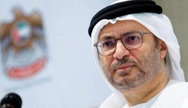 وزير الدولة الإماراتي للشؤون الخارجية: ماكرون محق ويجب الاستماع إليه