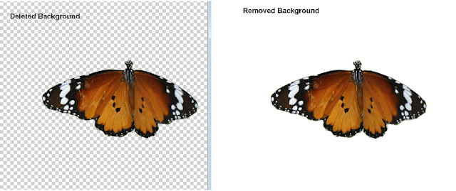 difference between removing and deleting a background