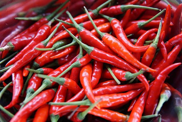 زراعة الفلفل Pepper