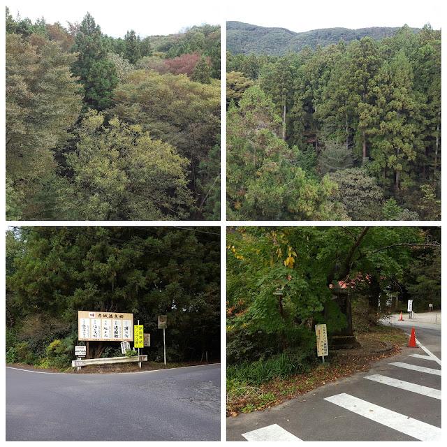 Jalan jalan ke gunung Akagi dengan menggunakan Sepeda