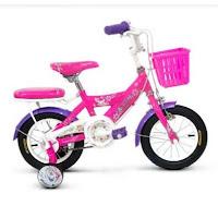 Sepeda Anak Wimcycle Frozen CTB 12 Inci Lisensi