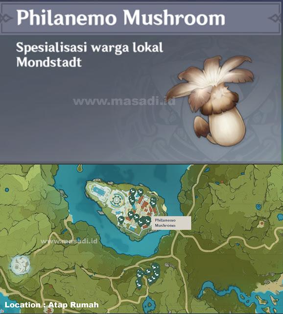 Philanemo Mushroom