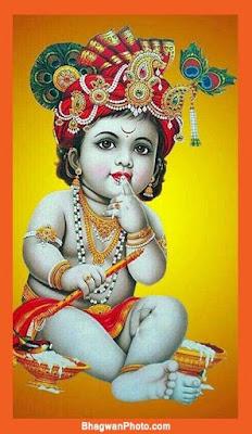 Kanha Images hd