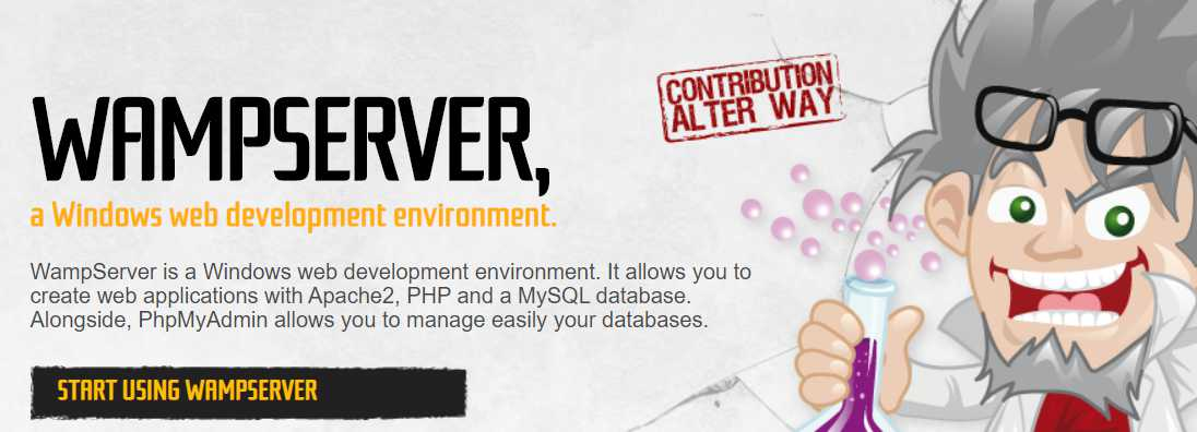 Download and Install Wamp Server