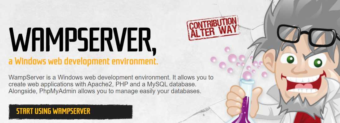 Install Wamp Server