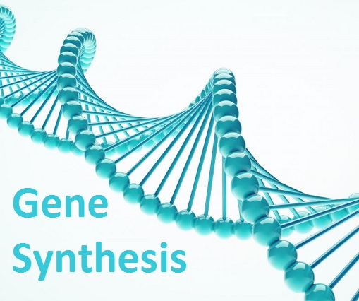 Gene Synthesis