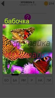 порхают бабочки вокруг цветков 2 уровень 400+ слов 2