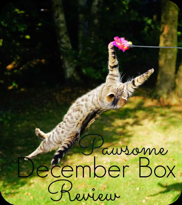pawsome box review