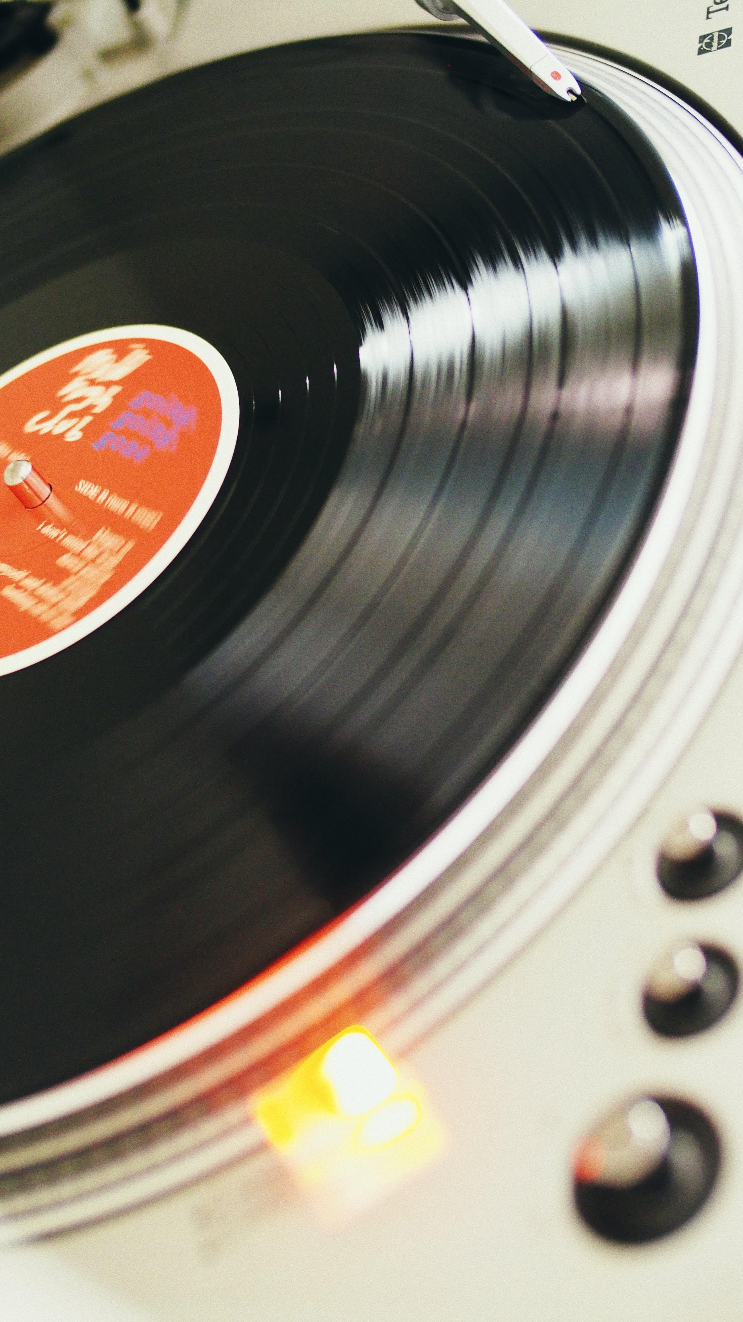 Mild High Club - Going Going Gone   Album & Vinyl Tipp mit Full Album Stream