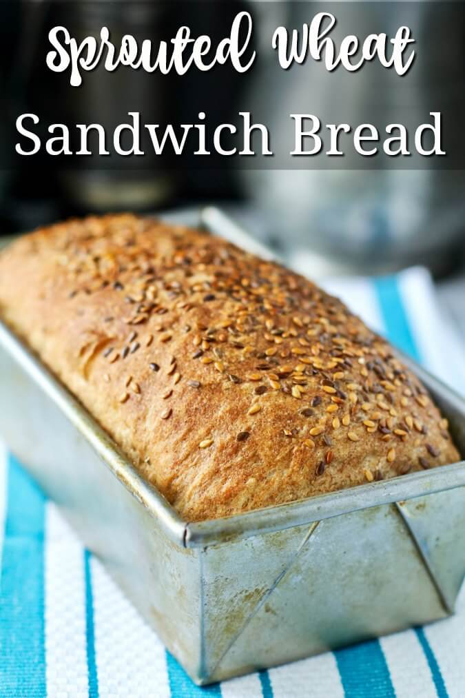 No Knead Sprouted Wheat and Flax Seed Sandwich Bread