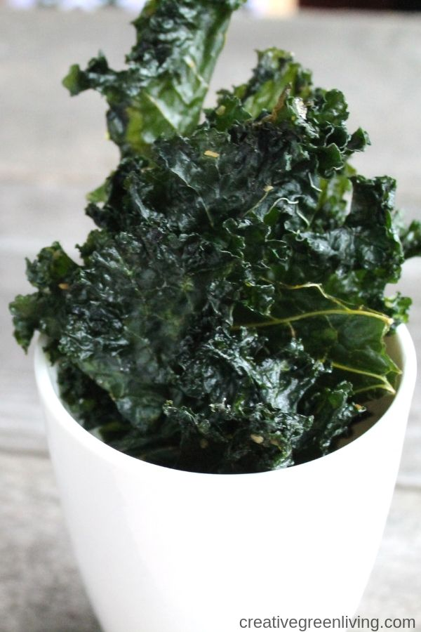 homemade salt and vinegar kale chips made in dehydrator