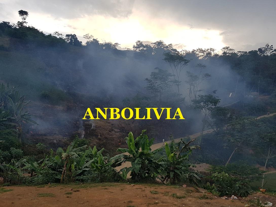 Anbolivia extensas zonas desmontadas en la asunta - Preparacion de la tierra para sembrar ...
