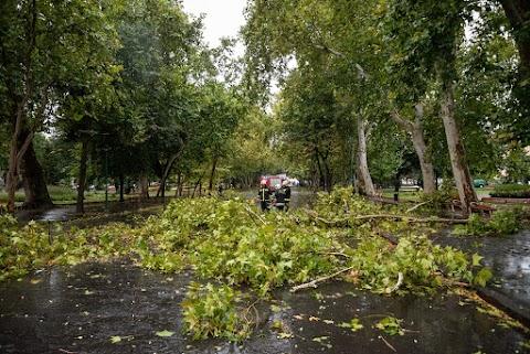Több mint hétszáz helyre riasztották a tűzoltókat Csongrád megyében