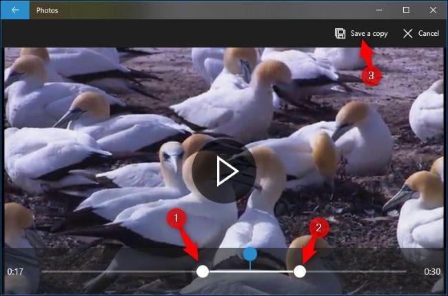 """حدد قسم الفيديو الذي تريده باستخدام المقابض وانقر على """"حفظ نسخة""""."""
