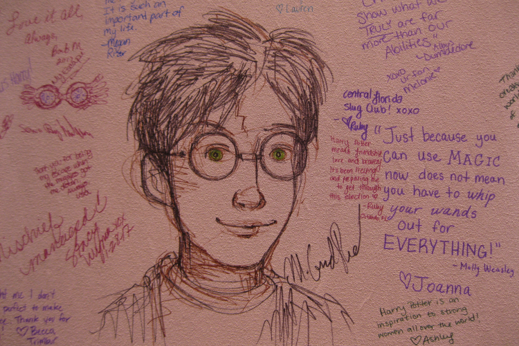 Mary GrandPre Harry Potter Illustration