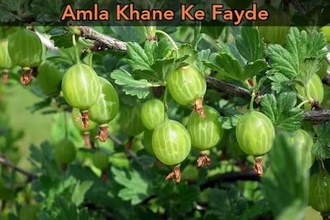 Amla Khane Ke Fayde in Hindi | Gooseberry Benefits in Hindi