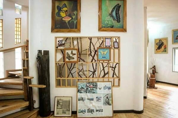 Museum Kupu Kupu Taman Kupu Kupu Gita Persada