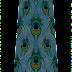 Traditional peckock print lehenga 7097