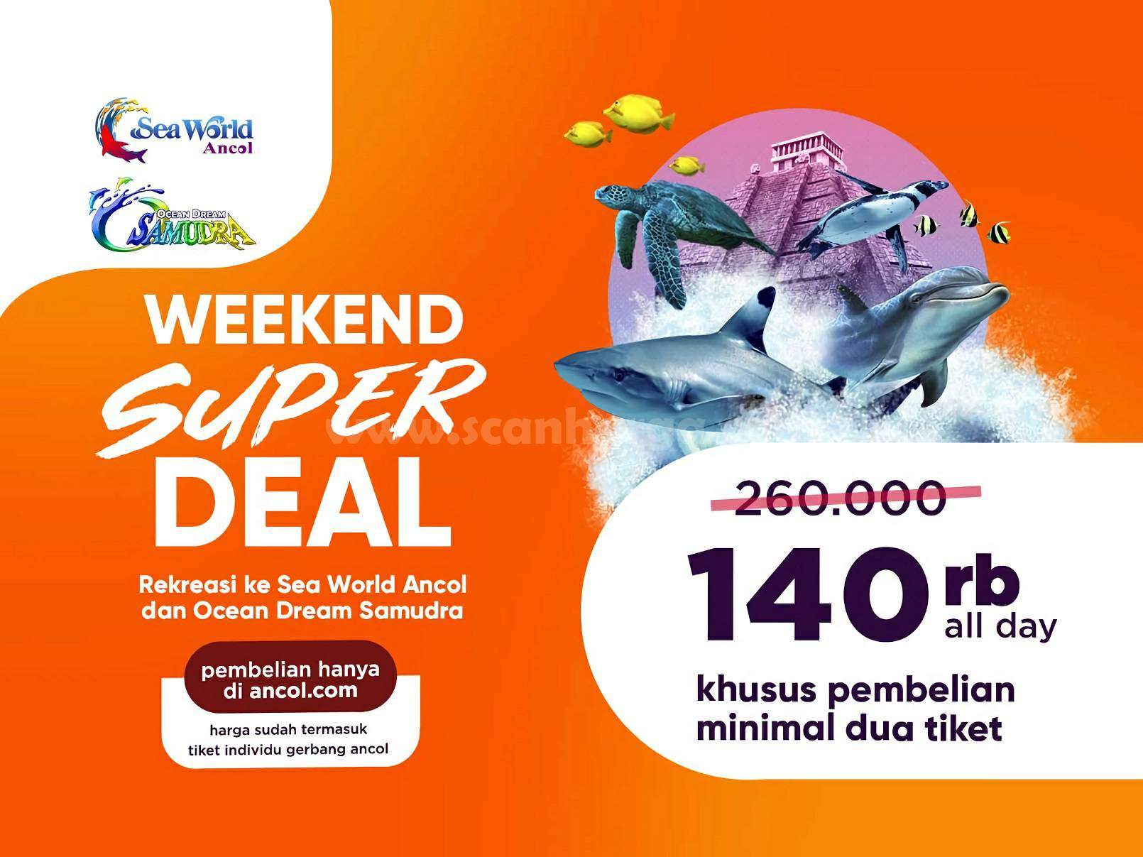 Ocean Dream Samudra Promo Weekend Super Deal Harga Cuma Rp. 140 Ribu