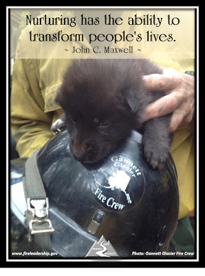 Nurturing has the ability to transform people's lives.  ~ John C. Maxwell ~ (firefighter nurturing a bear cub)