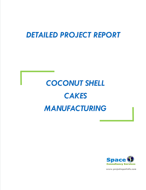 Project Report on Coconut Shell Cakes Manufacturing