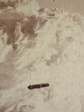 Foto Pertama Di Dunia Tentang Penampakan UFO