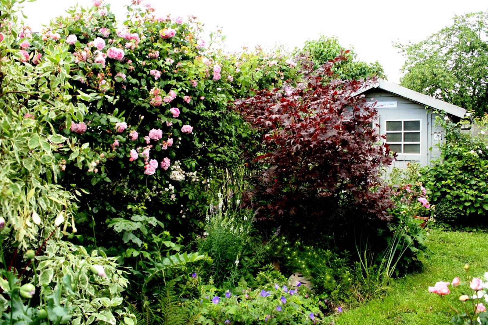 Jardin à Welekete