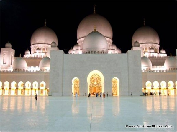Exterior: Islamic Thems: Sheikh Zayed Mosque At Night
